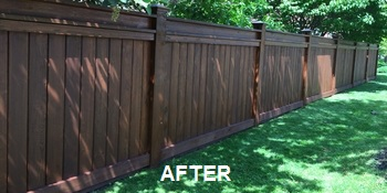 Fence Staining After Image